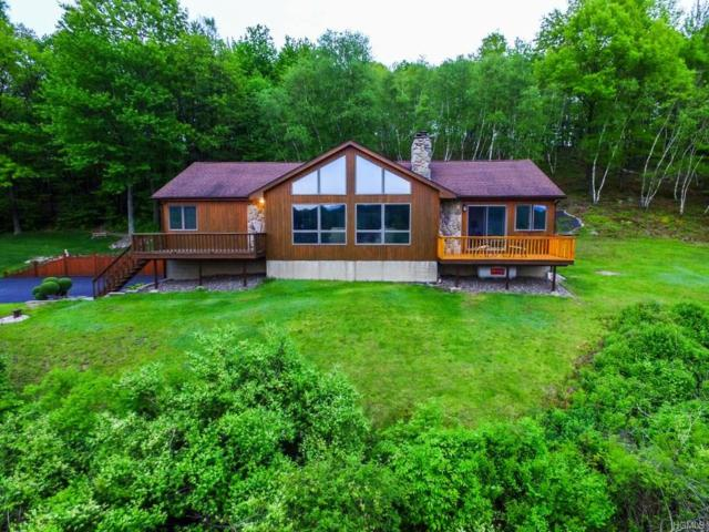 77 Dickison Road, Westtown, NY 10998 (MLS #4822951) :: William Raveis Baer & McIntosh