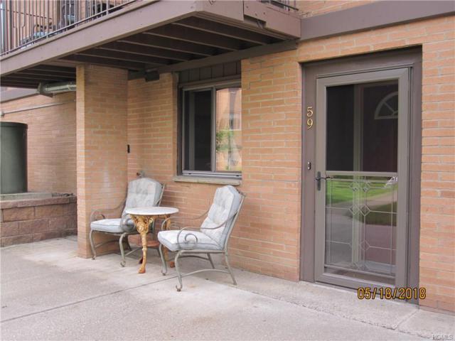 10 Oakwood Terrace #59, New Windsor, NY 12553 (MLS #4823017) :: William Raveis Baer & McIntosh