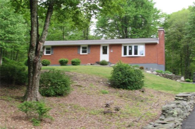 146 Mountain Road, Pine Bush, NY 12566 (MLS #4823028) :: William Raveis Legends Realty Group