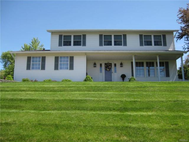 5 Dawn Court, Chester, NY 10918 (MLS #4823054) :: Stevens Realty Group