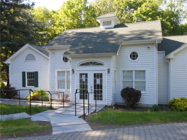 361 Route 202, Somers, NY 10589 (MLS #4823089) :: William Raveis Baer & McIntosh