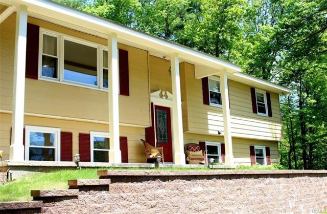 123 Phillipsport Road, Wurtsboro, NY 12790 (MLS #4823252) :: Stevens Realty Group