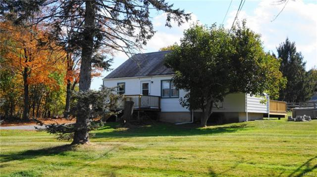 165 Sarah Wells Trail, Campbell Hall, NY 10916 (MLS #4823285) :: Stevens Realty Group