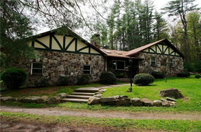 17 W Peenpack Trail, Sparrowbush, NY 12780 (MLS #4823343) :: William Raveis Legends Realty Group
