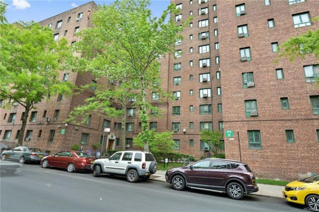 1514 Unionport Road 6A, Bronx, NY 10462 (MLS #4823359) :: Mark Boyland Real Estate Team
