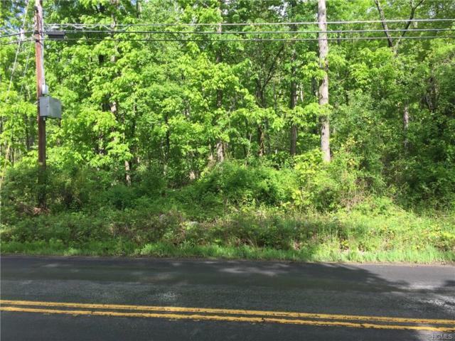 0 Roosa Gap Road, Wurtsboro, NY 12790 (MLS #4823366) :: Stevens Realty Group
