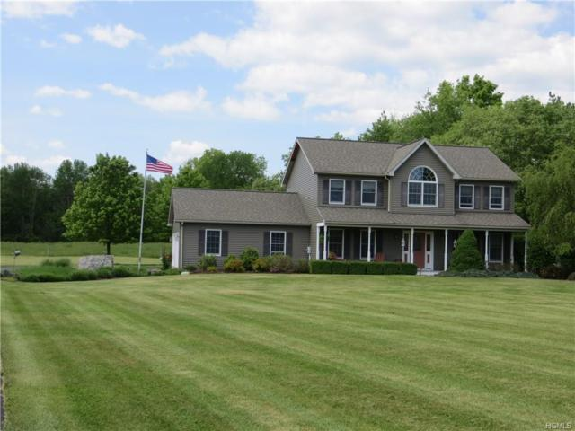 3122 New Prospect Road, Pine Bush, NY 12566 (MLS #4823367) :: Mark Boyland Real Estate Team