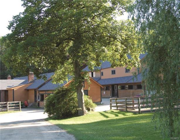 172 Baxter Road, North Salem, NY 10560 (MLS #4823496) :: Mark Boyland Real Estate Team