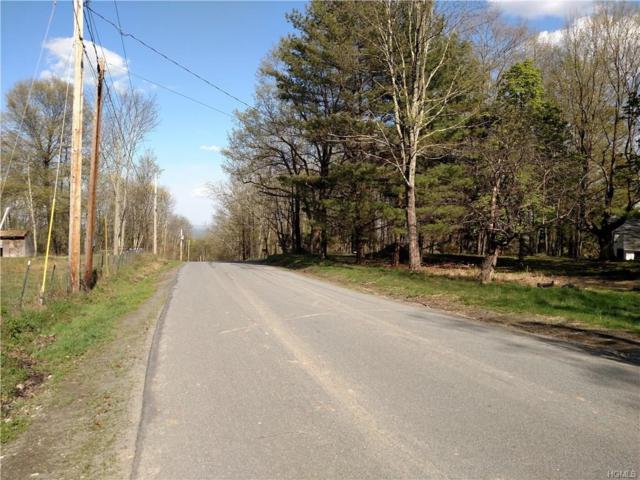 32 Crane Road, Bloomingburg, NY 12721 (MLS #4823580) :: Mark Boyland Real Estate Team