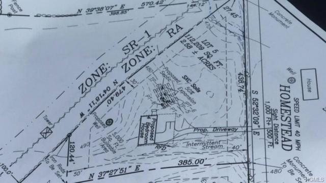 Homestead Lot 5 Lane, Otisville, NY 10963 (MLS #4823588) :: The Anthony G Team