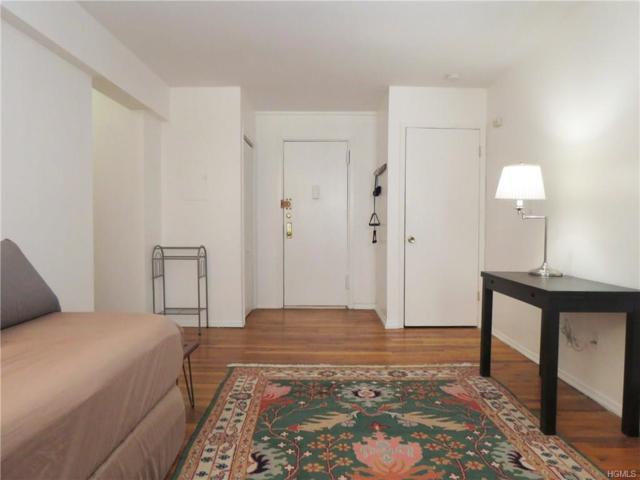 445 Broadway 2JJ, Hastings-On-Hudson, NY 10706 (MLS #4823635) :: Mark Boyland Real Estate Team