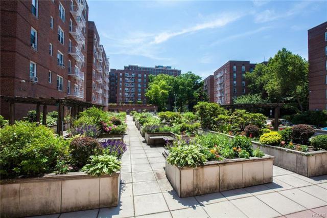 19 Abeel Street 4D, Yonkers, NY 10705 (MLS #4823738) :: Mark Boyland Real Estate Team
