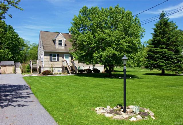 51 Sunny Lane, Stormville, NY 12582 (MLS #4823810) :: Mark Boyland Real Estate Team