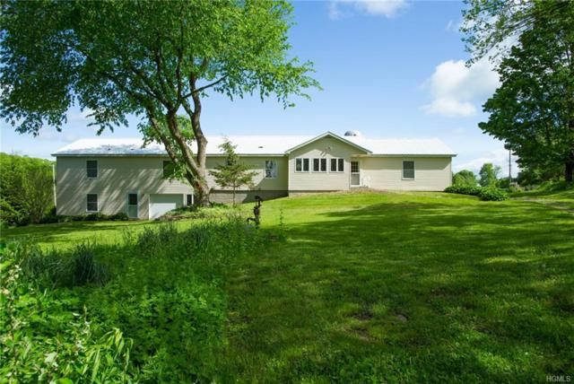384 Poplar Hill Road, Dover Plains, NY 12522 (MLS #4823842) :: Stevens Realty Group
