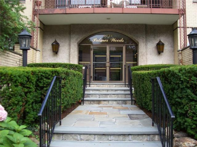 2221 Palmer 3A, New Rochelle, NY 10801 (MLS #4823879) :: William Raveis Legends Realty Group