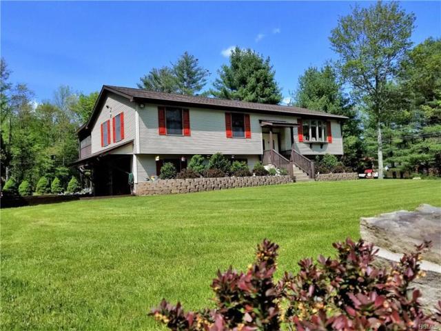 4 Marjorie Drive, Monticello, NY 12701 (MLS #4823887) :: Mark Boyland Real Estate Team