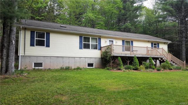 57 Rod And Gun Club Road, Monticello, NY 12777 (MLS #4823890) :: Mark Boyland Real Estate Team