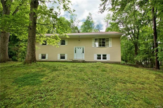 15 Quincy Road, Putnam Valley, NY 10579 (MLS #4824014) :: Shares of New York