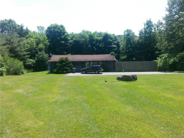 838 Route 284, Westtown, NY 10998 (MLS #4824025) :: William Raveis Baer & McIntosh