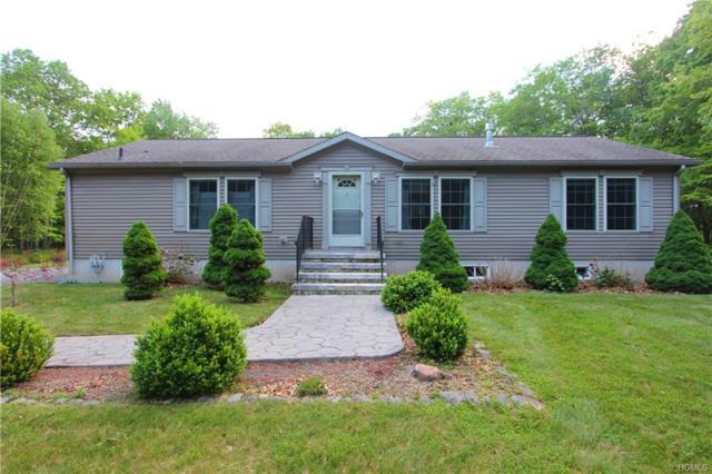 579 Peenpack Trail, Sparrowbush, NY 12780 (MLS #4824135) :: William Raveis Baer & McIntosh
