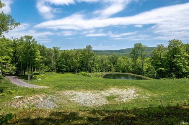 Amys Lane, Spencertown, NY 12017 (MLS #4825040) :: Shares of New York