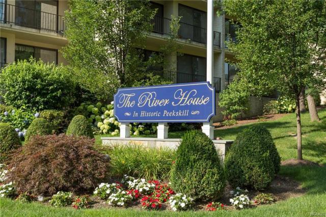 150 Overlook Avenue 5K, Peekskill, NY 10566 (MLS #4825127) :: William Raveis Baer & McIntosh