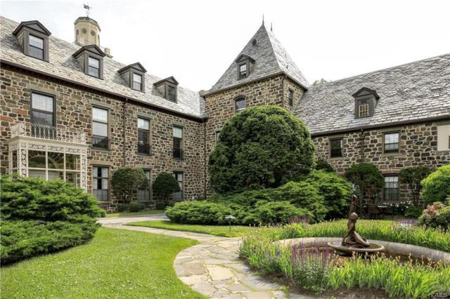 341-11 Furnace Dock Road, Cortlandt Manor, NY 10567 (MLS #4825584) :: William Raveis Baer & McIntosh