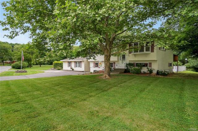 38 Park Drive, Chester, NY 10918 (MLS #4826024) :: William Raveis Baer & McIntosh