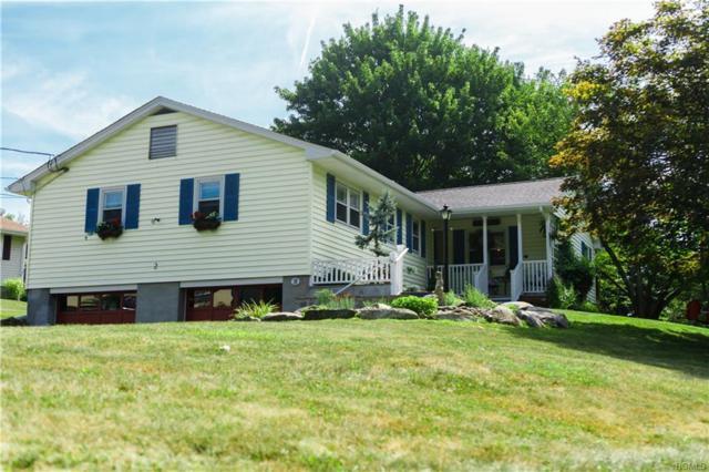 2 Wood Road, Chester, NY 10918 (MLS #4826123) :: Mark Seiden Real Estate Team