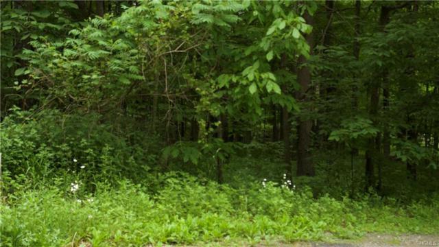 1501 Us Route 209, Cuddebackville, NY 12729 (MLS #4826169) :: William Raveis Baer & McIntosh