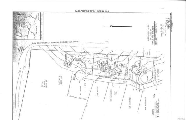 Deer Pond Road, Verbank, NY 12585 (MLS #4826237) :: Mark Seiden Real Estate Team