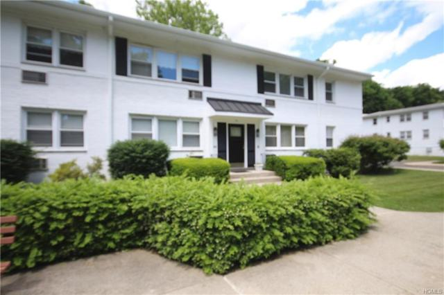 67 Avon Circle D, Rye Brook, NY 10573 (MLS #4826543) :: Mark Seiden Real Estate Team