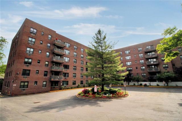 77 Carpenter Avenue 6F, Mount Kisco, NY 10549 (MLS #4827033) :: William Raveis Baer & McIntosh