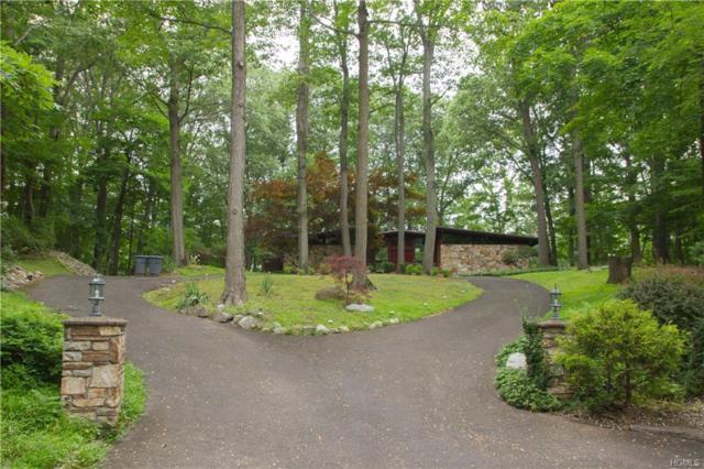 15 Doe Drive, Suffern, NY 10901 (MLS #4827153) :: Mark Boyland Real Estate Team