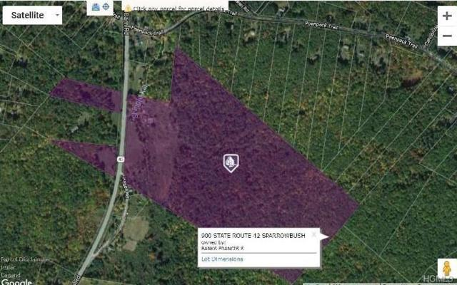 900 State Route 42, Sparrowbush, NY 12780 (MLS #4827361) :: Stevens Realty Group