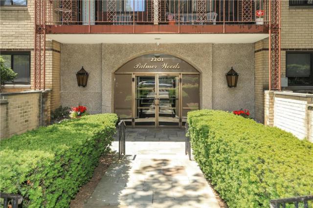 2201 Palmer Avenue 3-O, New Rochelle, NY 10801 (MLS #4827422) :: Mark Boyland Real Estate Team