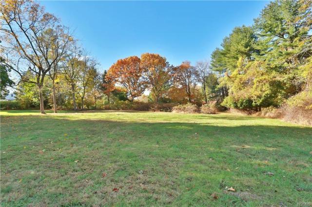 Palmer Lane, Pleasantville, NY 10570 (MLS #4827552) :: Mark Seiden Real Estate Team