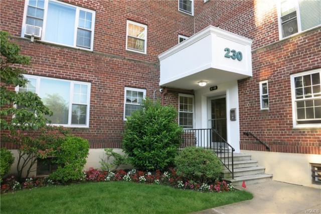 230 Pelham Road 4E, New Rochelle, NY 10805 (MLS #4827561) :: Mark Boyland Real Estate Team