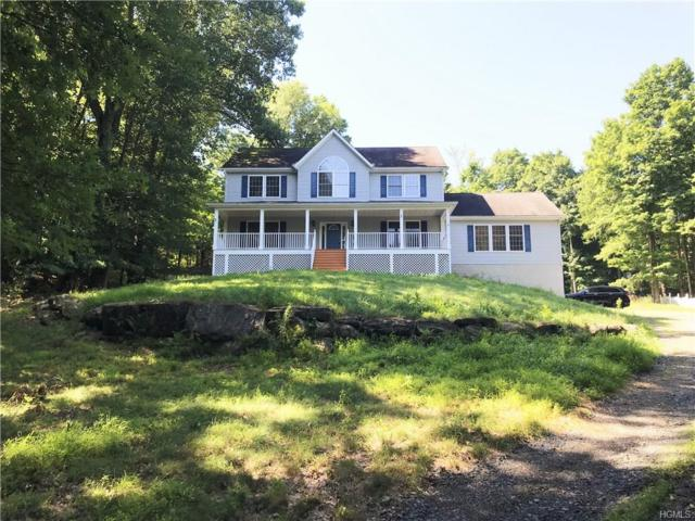 84 Horton Road, Washingtonville, NY 10992 (MLS #4827581) :: William Raveis Baer & McIntosh