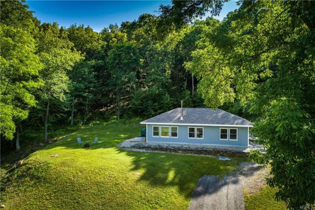 1512 Route 343, Dover Plains, NY 12522 (MLS #4827832) :: Stevens Realty Group