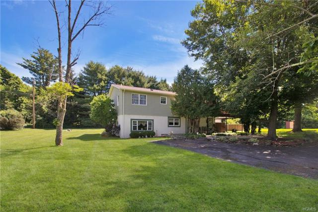 43 Tompkins Road, Verbank, NY 12585 (MLS #4828014) :: Stevens Realty Group