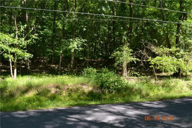 Shore Drive, Blooming Grove, NY 10914 (MLS #4828495) :: Mark Boyland Real Estate Team