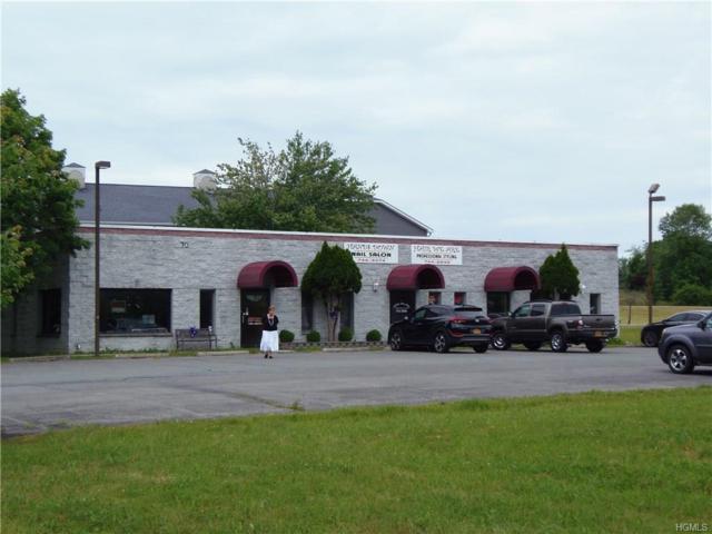 70 Boniface Drive, Pine Bush, NY 12566 (MLS #4828519) :: William Raveis Legends Realty Group