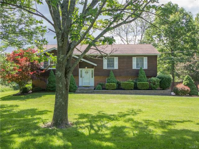 307 Gillespie, Pine Bush, NY 12566 (MLS #4828555) :: William Raveis Baer & McIntosh
