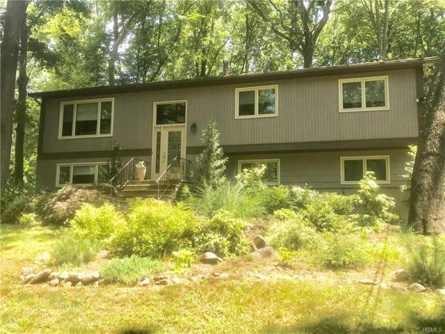 20 Ross Avenue, Chestnut Ridge, NY 10977 (MLS #4828808) :: William Raveis Baer & McIntosh