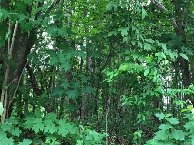 338 Kings Highway, Warwick, NY 10990 (MLS #4828890) :: William Raveis Baer & McIntosh