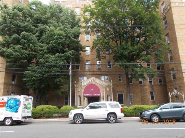219 Bronx River Road 5H, Yonkers, NY 10704 (MLS #4828905) :: William Raveis Baer & McIntosh