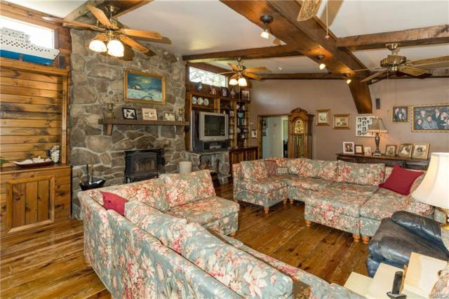 1429 Route 9, Tivoli, NY 12583 (MLS #4828981) :: Shares of New York