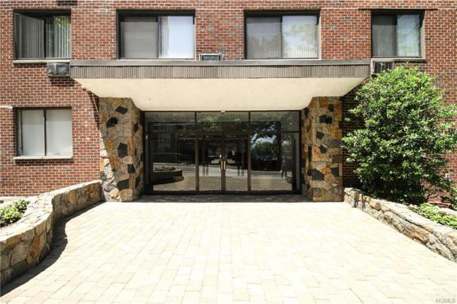 25 E Lake Street 2E, White Plains, NY 10603 (MLS #4828989) :: William Raveis Legends Realty Group