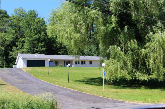 476 Granite Road, Kerhonkson, NY 12446 (MLS #4829023) :: Mark Seiden Real Estate Team